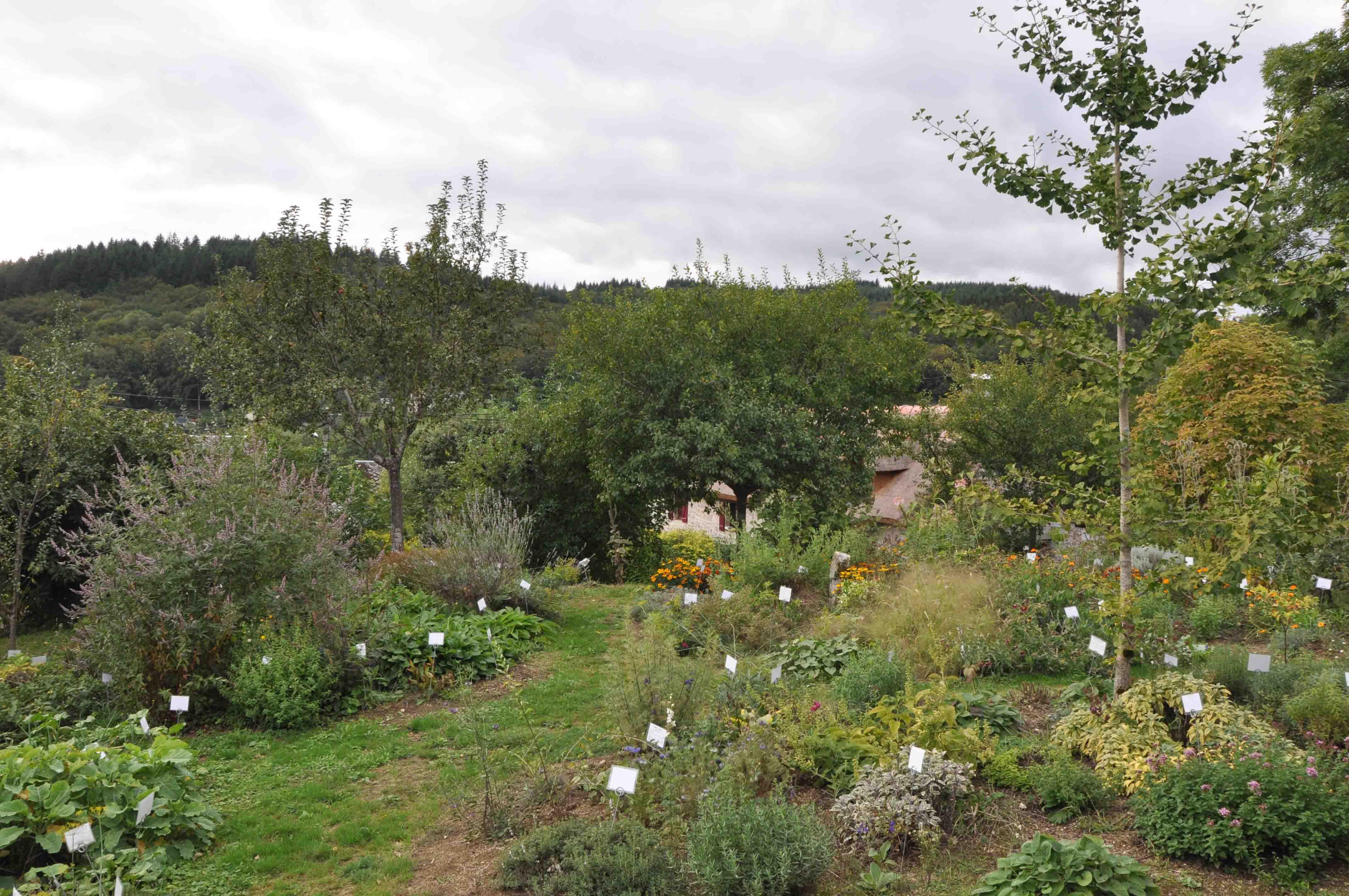 Dominique lepage cultiver et utiliser les plantes for Jardin plantes aromatiques